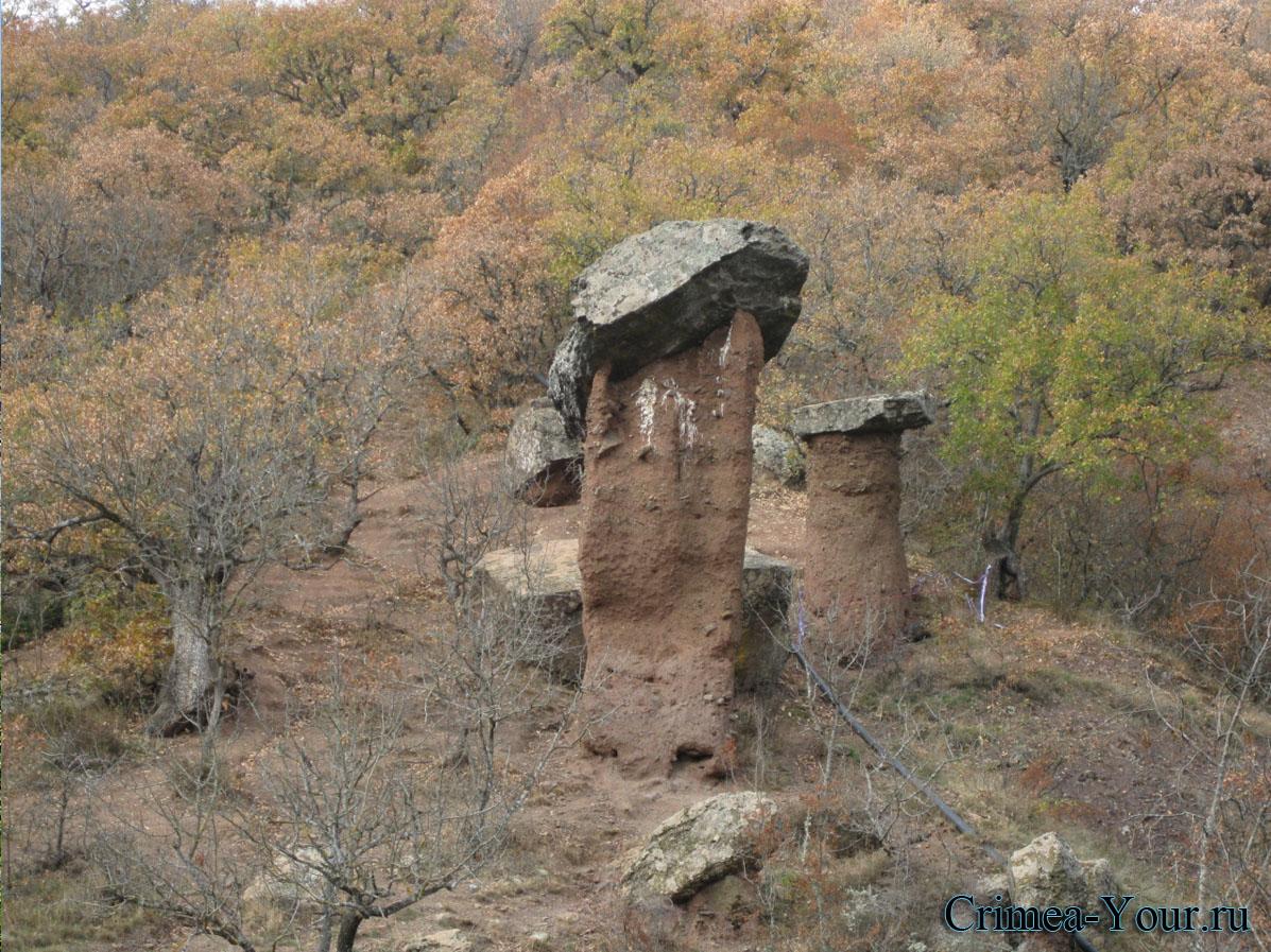 Алушта. Каменные грибы. Сотера