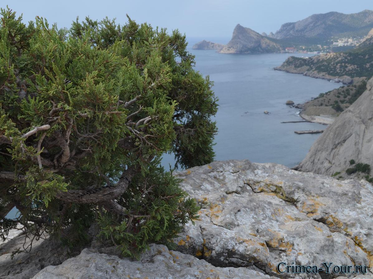 Вид на море со стороны Генуезской Крепости в Крыму