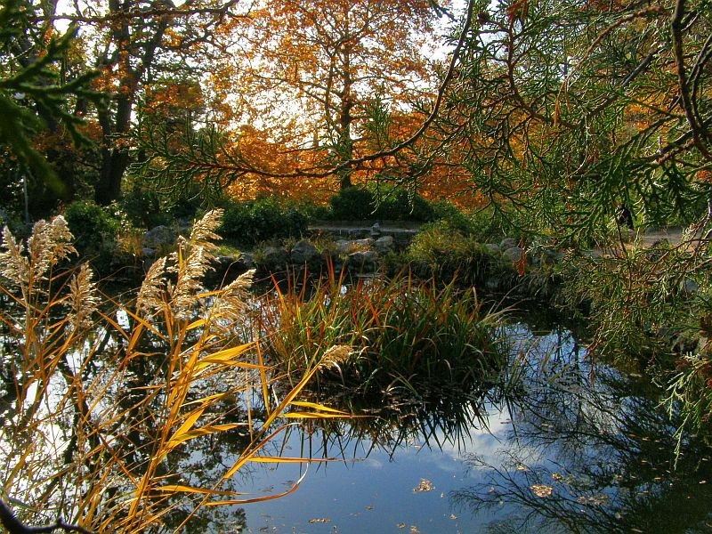 Форосский парк. Райский уголок. Осень